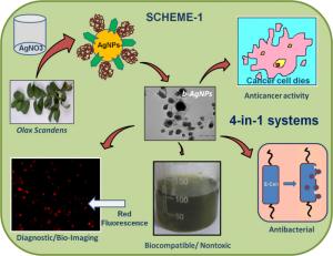 Nanoparticelle biosintetizzate